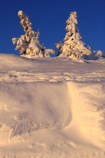 Winterlandschaft am Brocken im Harz 24 by Karina Baumgart