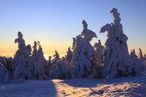 Winterlandschaft am Brocken im Harz 25 by Karina Baumgart