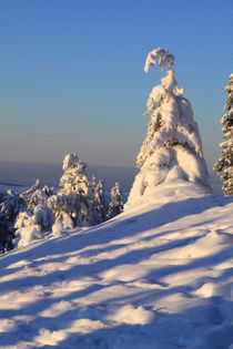 Winterlandschaft am Brocken im Harz 27 by Karina Baumgart