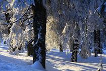 Winterlandschaft am Brocken im Harz 29 von Karina Baumgart