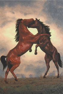 HORSES - Fighting in a Storm von Jarmila Matyasova