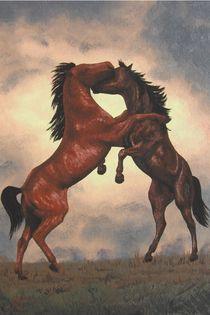 129-horses17