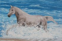 HORSES - A Heavy Sea by Jarmila Matyasova