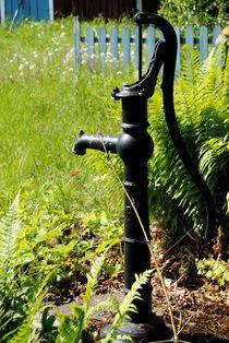 Wasserpumpe von tinadefortunata