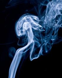 Mushroom Smoke von Buster Brown Photography