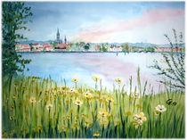 Konstanzer Trichter im Frühling by Christine  Hamm