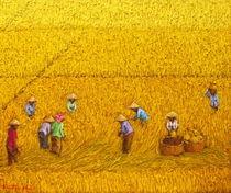 Harvest 13 by Sunarto Srimartha