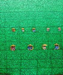 Harvest 9 by Sunarto Srimartha