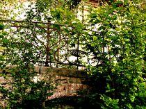 overgrown structure II von Oliver Metz