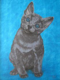 Cat I. by Jarmila Matyasova