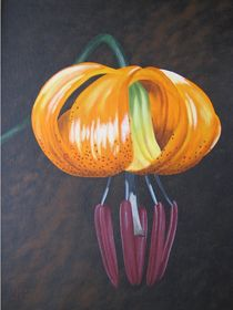 FLOWERS - Gold Lily von Jarmila Matyasova