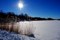 Sonne am See von tinadefortunata