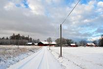 Weg ins Dorf by tinadefortunata