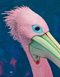 Pelican Partygoer by Margaret Saheed