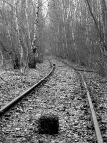 lost track II by Oliver Metz
