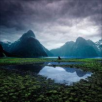 Milford Sound von Eugene Zhulkov
