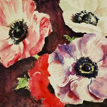 Anemones by Katia Boitsova-Hošek