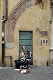 accordion von disan