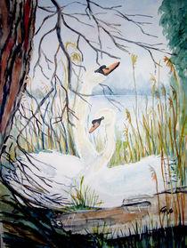 Schwäne im Nest von Christine  Hamm