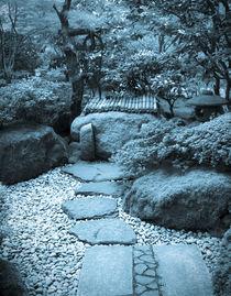Stone walkway to well cyan  by Chris Bidleman