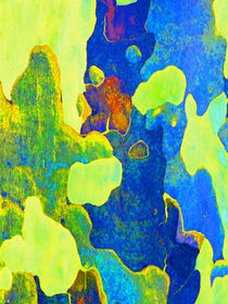 Summer Eucalypt Abstract 14 by Margaret Saheed