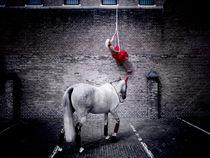 Escaperope  von Henk Bleeker