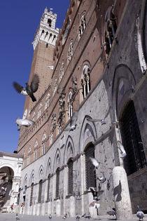 Torre del mangia by David Vaaknin