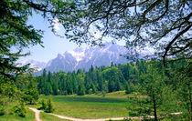 Ferchensee Trail Bavaria Germany by Kevin W.  Smith