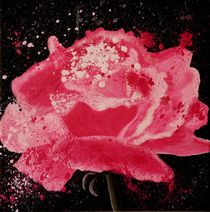 The power of rose by Petra Koob