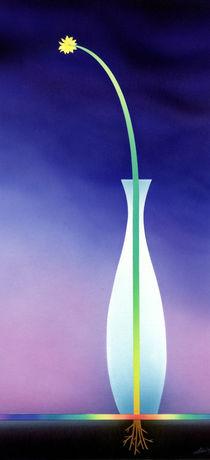 Blume in Vase by Hans-Georg Fischenich