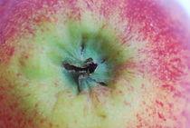 Apple No1 von Chi Qo