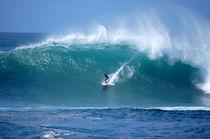 Waimea Bay Wave North Shore Oahu Hawaii by Kevin W.  Smith