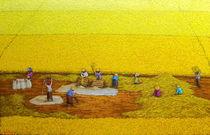 Harvest 17 by Sunarto Srimartha