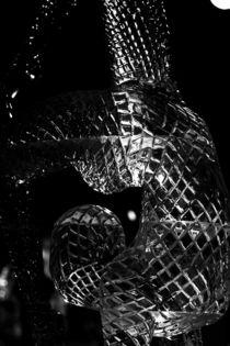 Ice-acrobat by Martin Heinz