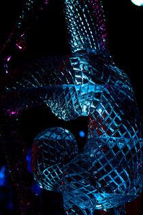 Ice-acrobat von Martin Heinz