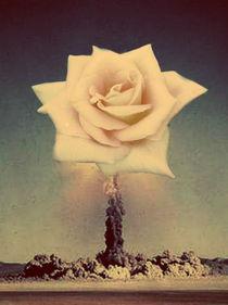 Atomic Bloom  by Samara van Rijswijk