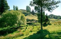 Whangamomona Forgotten World Highway North Island New Zealand von Kevin W.  Smith