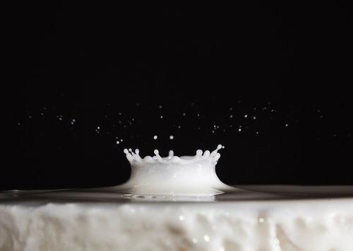 Milk07