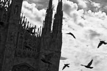 Milan by Matteo D'Alessandro
