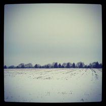 Snowy Fields. von Benjamin Castle