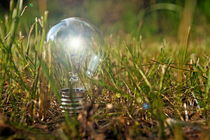 Lit bulb on grass von Sami Sarkis Photography