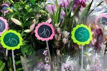 Flowers for sale at market von Sami Sarkis Photography