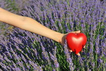 Holding heartshape in lavender field von Sami Sarkis Photography