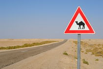Camels crossing road sign by Sami Sarkis Photography
