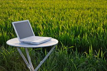 Laptop on table by a wheat field at sunset von Sami Sarkis Photography