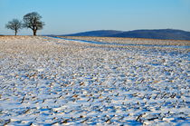 Snowy fields in winter by Sami Sarkis Photography