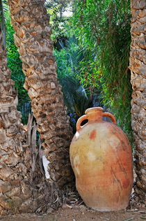 Clay jar by Palm tree von Sami Sarkis Photography