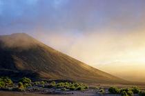 Ash plains around Mount Yasur at sunset von Sami Sarkis Photography