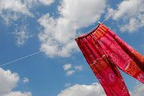 Pant hanging on washing line von Sami Sarkis Photography