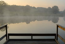 Wooden pontoon and hazy pond at sunrise by Sami Sarkis Photography